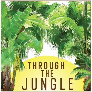 Through The Jungle – Professional Life Coach: Deborah Halvorson